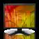 "Eizo FlexScan S2133-GY svetlo siv, 21,3""/ 54cm"